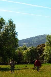 paseando por el campo